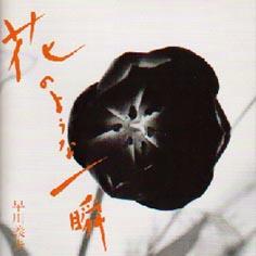 yoshio_5.jpg