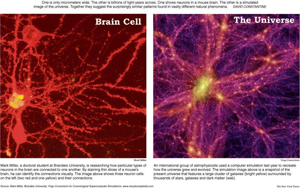 neuron-galaxy.jpg